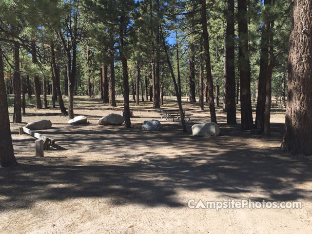 Holcomb Valley - Campsite Photos and Camping Information