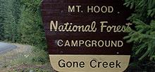 Campsitephotos Com Campsite Photos