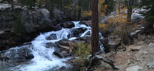Aspen Campground – Inyo National Forest