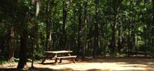 Campground Directory Campsite Photos