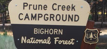 Prune Creek
