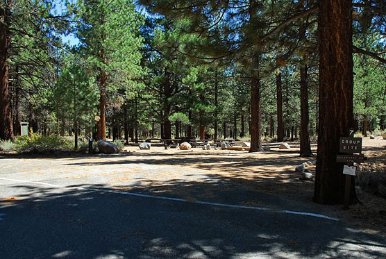 What is also has is half a dozen regular sites mixed in. To get to it you  have to drive through New Shady Rest. The individual sites are big and  reservable.