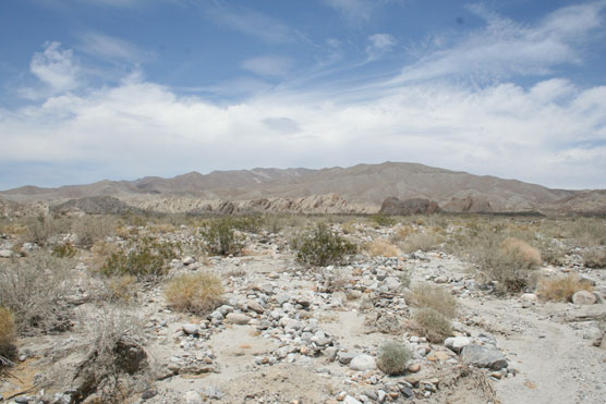Anza-Borrego-State-Park-View