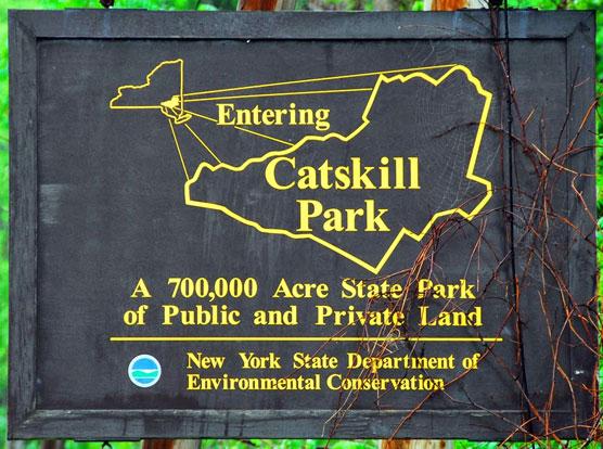 Catskill Park and Campground Report - Campsite Photos