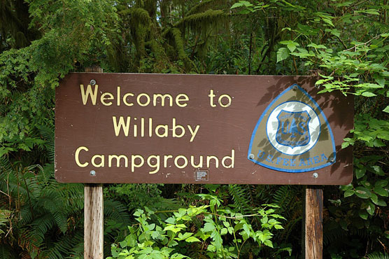 Willaby_Sign