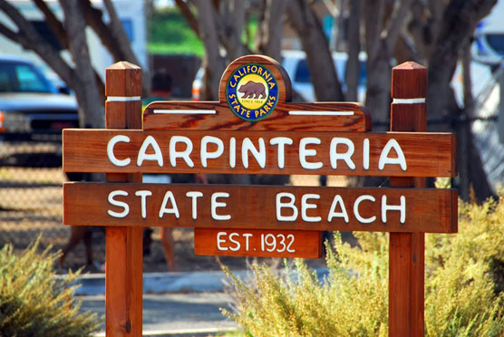 Carpenteria-Sign
