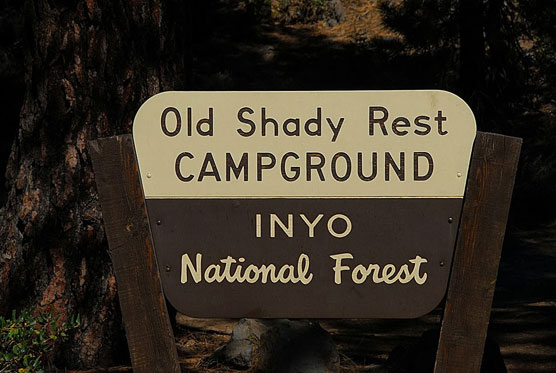Old-Shady-Rest-Sign