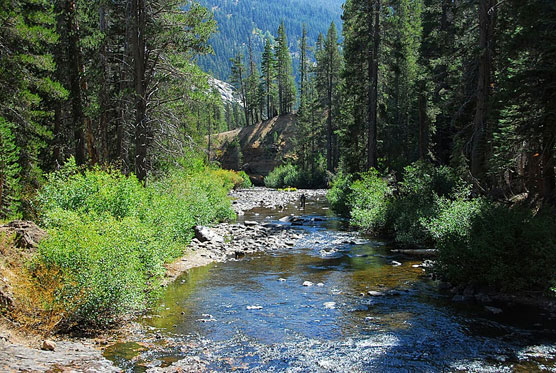 River-View-Upper-Soda-Springs