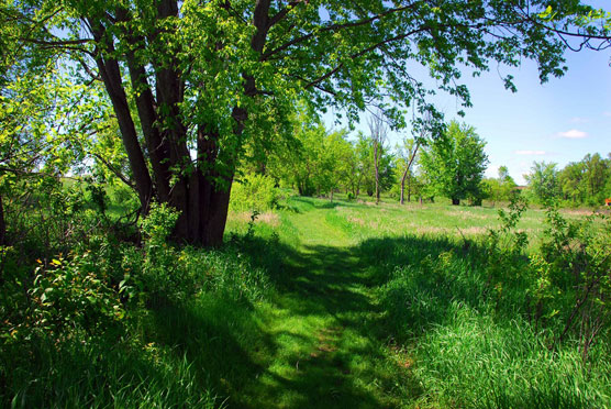 Blue-Mounds-Trail-1