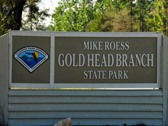Gold-Head-Branch-Sign