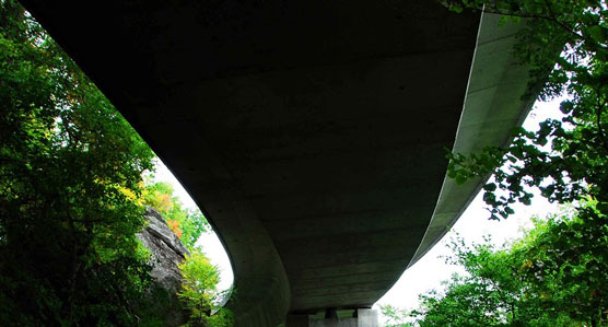 Under-the-Viaduct