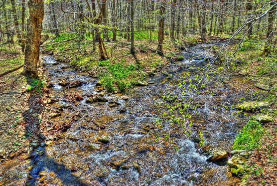 Owens-Creek-View-2