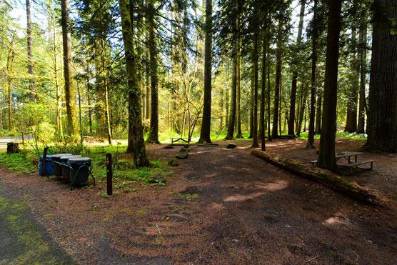 Washington State Campground Report Campsite Photos