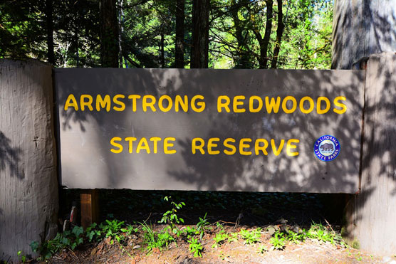 Armstrong-Redwoods-Sign