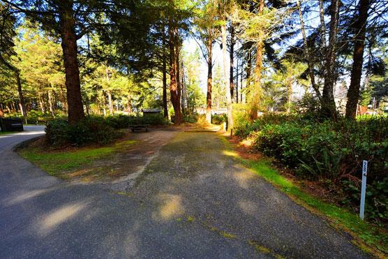 'Wild' Northern California Campgrounds! - Campsite Photos