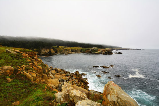 Gerstle-Cove-View-1