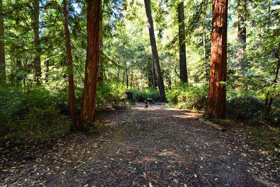 Richardson-Grove_034
