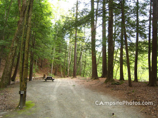 Mohawk Trail State Forest 022