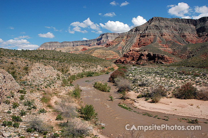 Virgin River Canyon Recreation Area River View