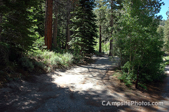 Reversed Creek - Campsite Photos and Camping Information