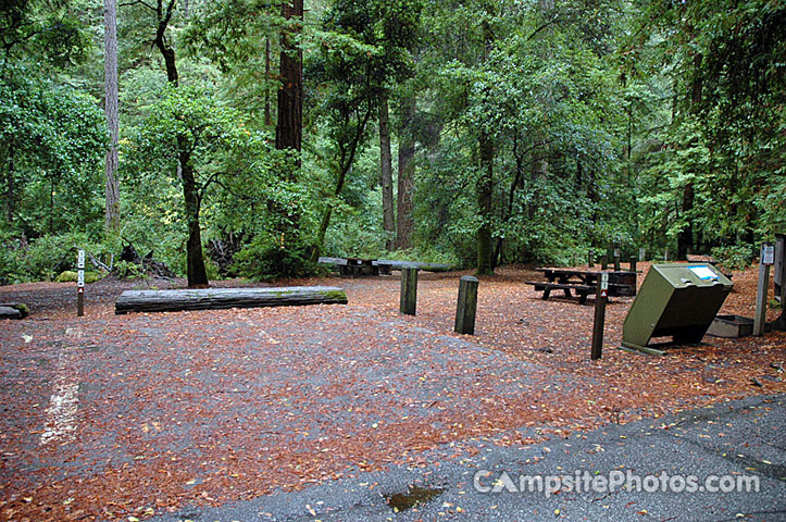 Portola Redwoods SP 011