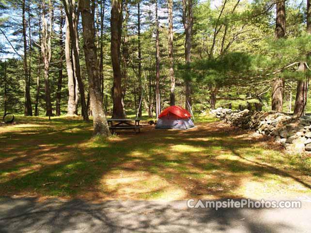 Housatonic Meadows State Park Campsite Photos