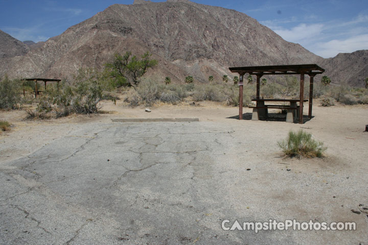 Borrego Palm Canyon 058