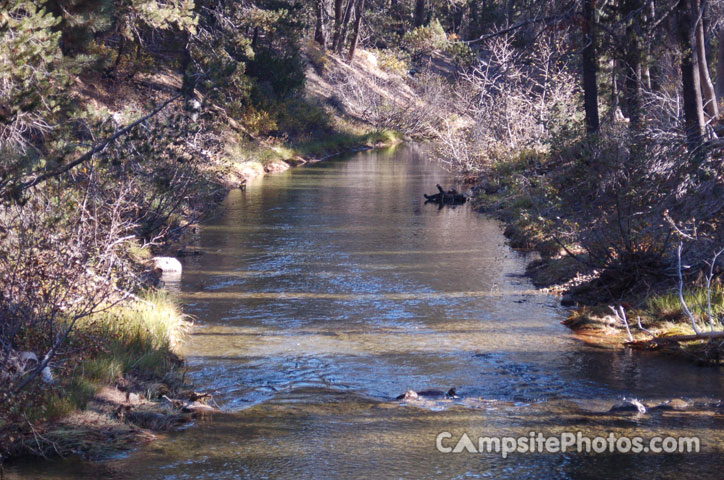 Donner Creek at Campground