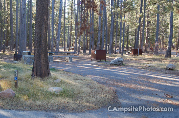Donner Memorial State Park 089