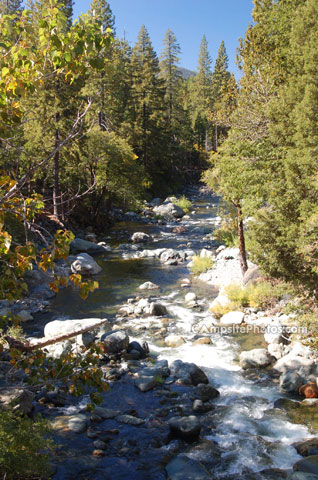 Yuba River near Wild Plum
