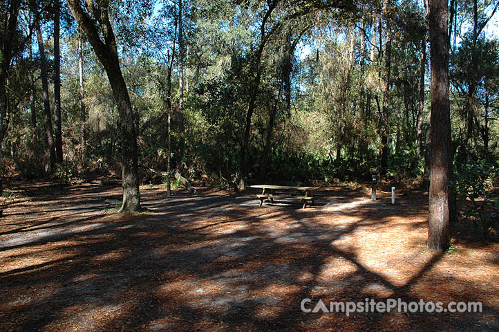 Hillsborough River State Park 085