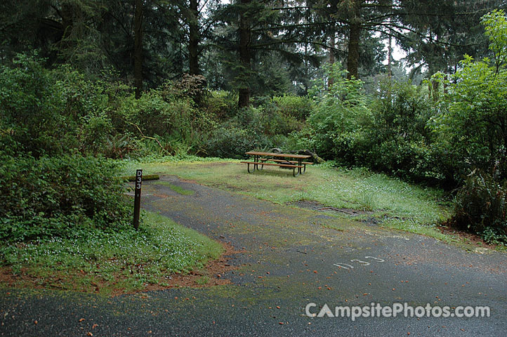 Harris Beach State Park Campground Oregon