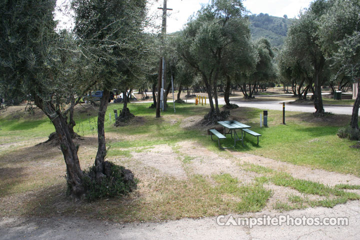 Lake Piru Olive Grove Campground 011