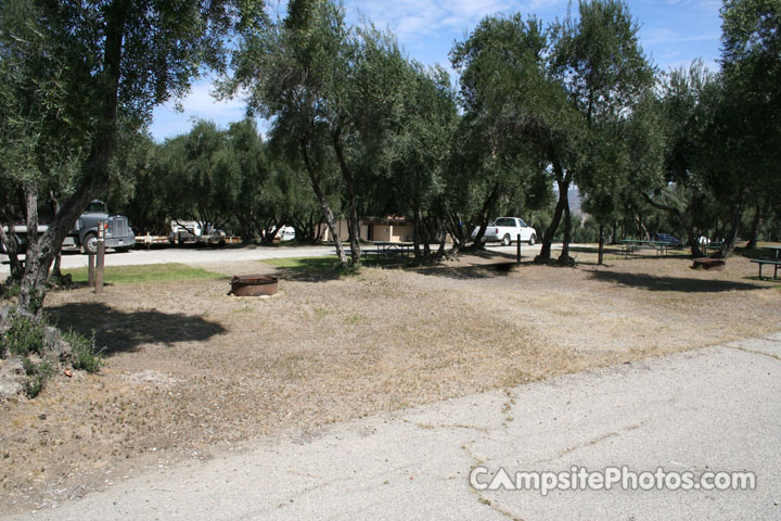 Lake Piru Olive Grove Campground 058
