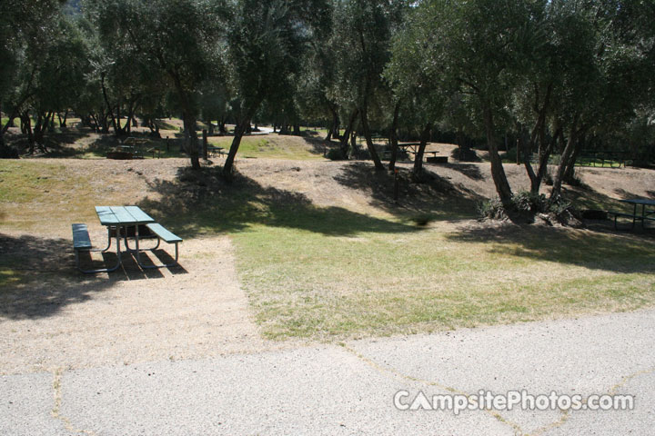 Lake Piru Olive Grove Campground 061