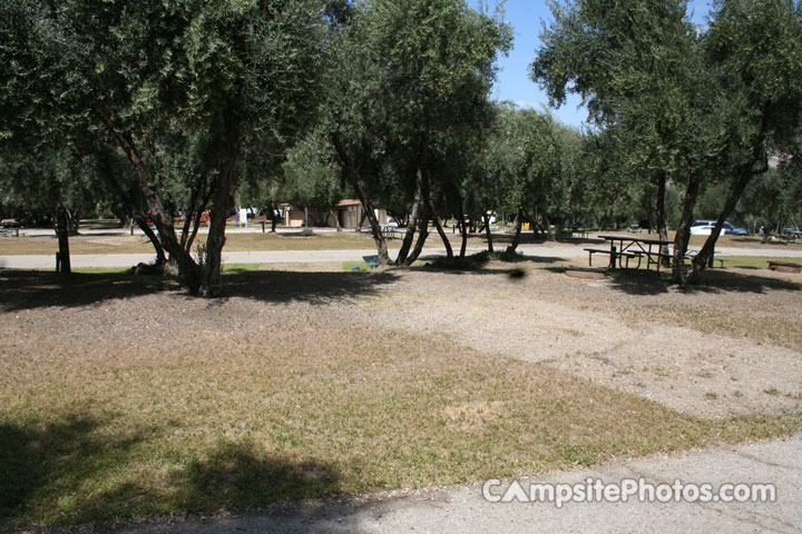 Lake Piru Olive Grove Campground 074