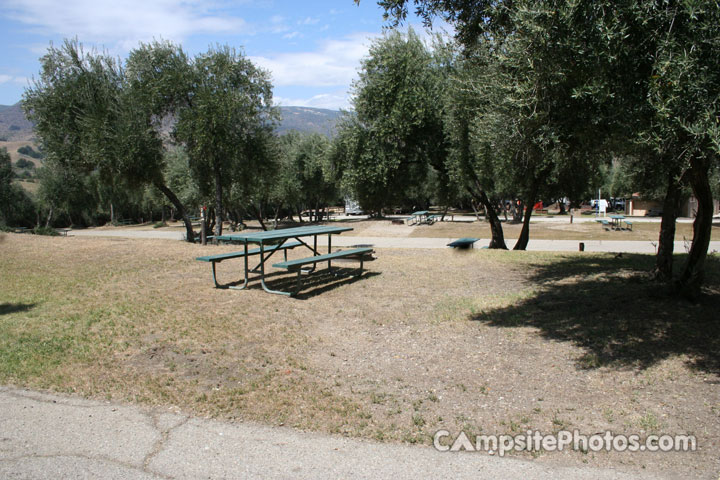 Lake Piru Olive Grove Campground 076