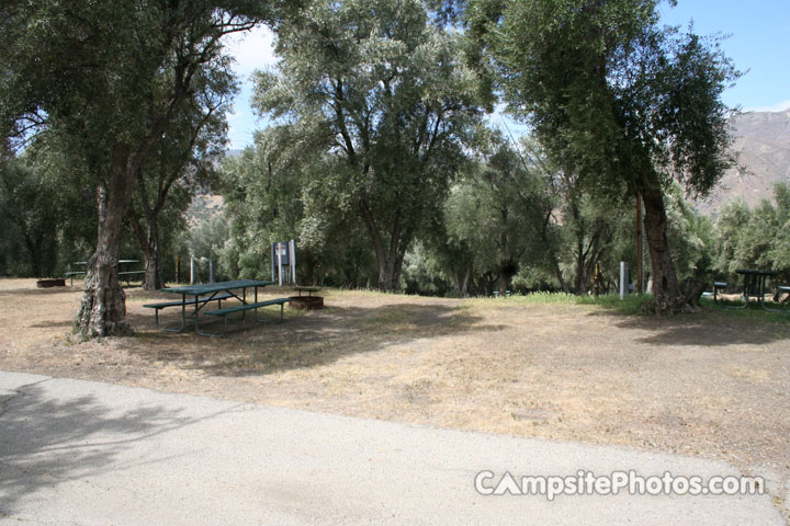 Lake Piru Olive Grove Campground 137