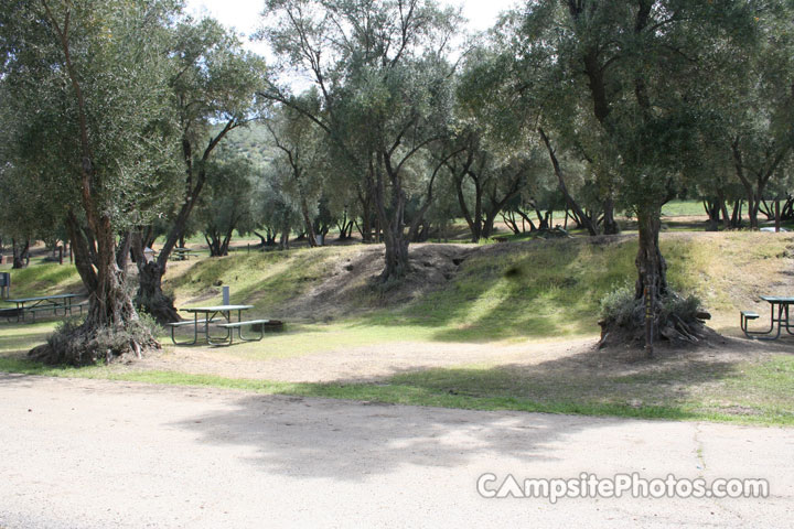 Lake Piru Olive Grove Campground 144