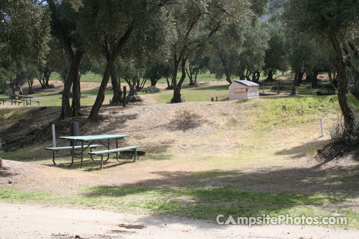 Lake Piru Olive Grove Campground 148