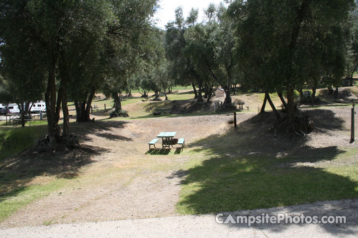 Lake Piru Olive Grove - Campsite Photos, Reservations & Camp