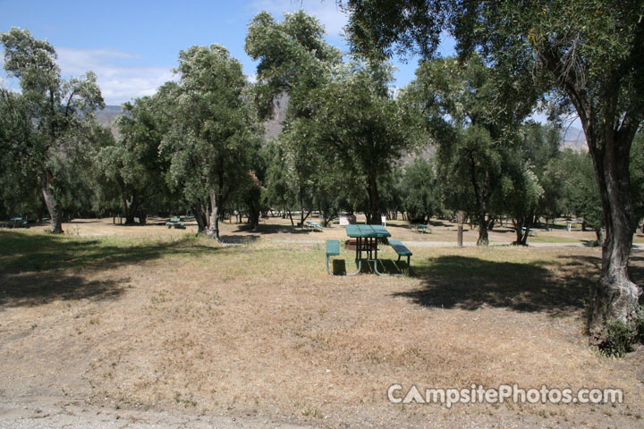 Lake Piru Olive Grove Campground 187