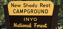 New Shady Rest