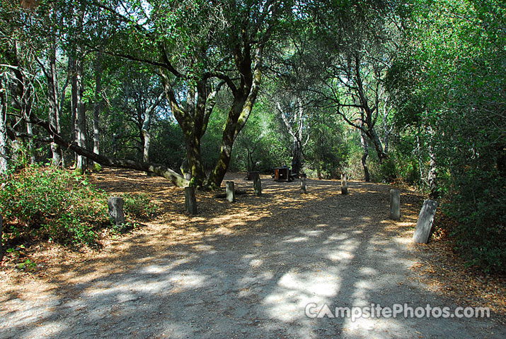 Henry Cowell 035