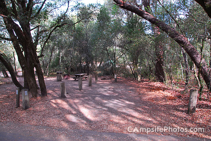 Henry Cowell 048