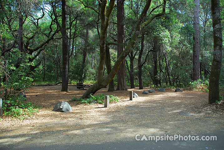 Henry Cowell 052