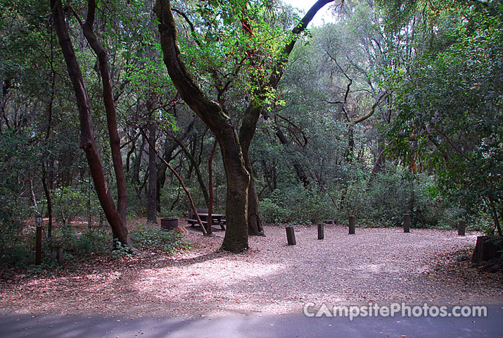 Henry Cowell 056