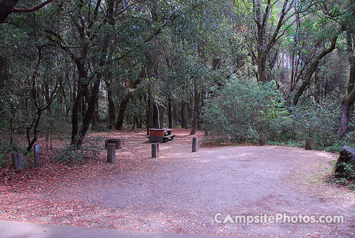 Henry Cowell 058