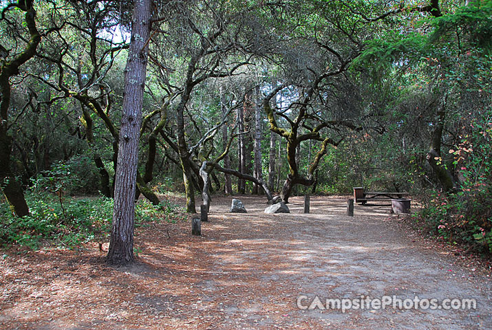Henry Cowell 065