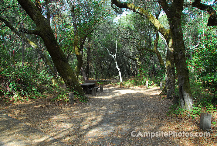 Henry Cowell 095